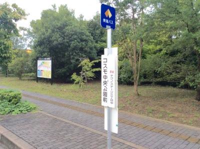 公園 コスモ 中央