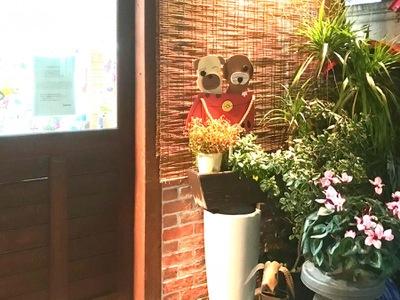 おか は 動物 病院 す おり動物病院 大阪府八尾市の動物病院